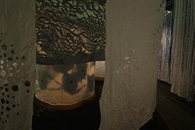 Ed Pien - Source: Corridor of Rain