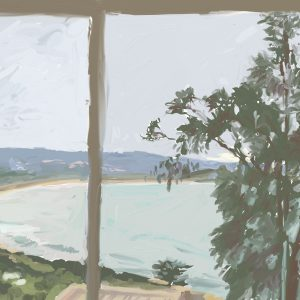View from window - Pambula