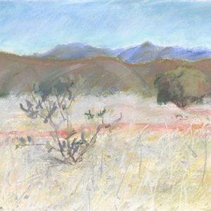 Brindabella Hills pastel